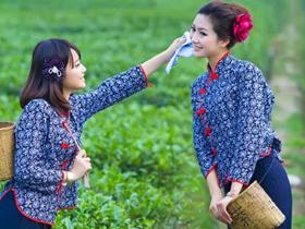 现代茶诗《鹧鸪天·龙井茶》赏析_描写浙江名茶龙井茶的古诗_关于茶的诗句