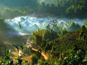 描写普洱茶文化的诗句《赋澜沧景迈栽培型万亩古茶林》赏析_赞美普洱古树的茶诗