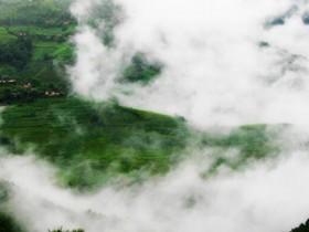 描写离开普洱茶的故乡诗句《茶的情怀》_关于普洱茶的唯美现代诗