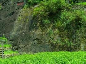 描写武夷岩茶大红袍原产地天心岩的唯美茶诗妙句《夜宿天心》赏析