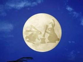 苏轼茶诗80首之《月兔茶》赏析