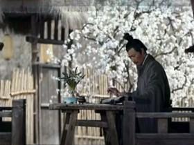 苏轼茶诗80首之《元祐六年六月自杭州召还汶公馆我于东堂阅旧诗卷》赏析