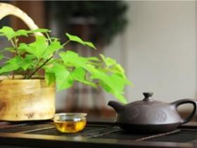 赵朴初的最美经典茶诗《吟茶诗》赏析