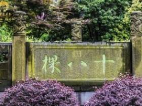 【乾隆赐名】关于西湖龙井起源故事传说100字简短版