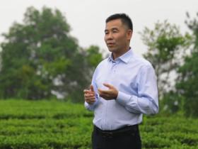 茶观天下独家专访_非遗传承人郑华山:安溪铁观音如何回归传统