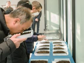 《陈年武夷岩茶储存技术规范》标准获批公示,东方六禾推动岩茶品类升级