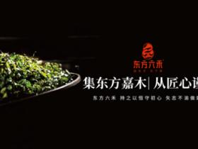 东方六禾依托坚实根基和文化优势,倾力打造中国老岩茶第一品牌