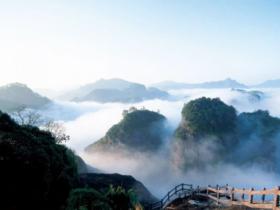东方六禾武夷岩茶山场说:独树一帜悟源涧的仙境之美
