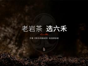 老岩茶·选六禾:中国武夷陈岩茶标准缔造者东方六禾十大茶叶连锁支持